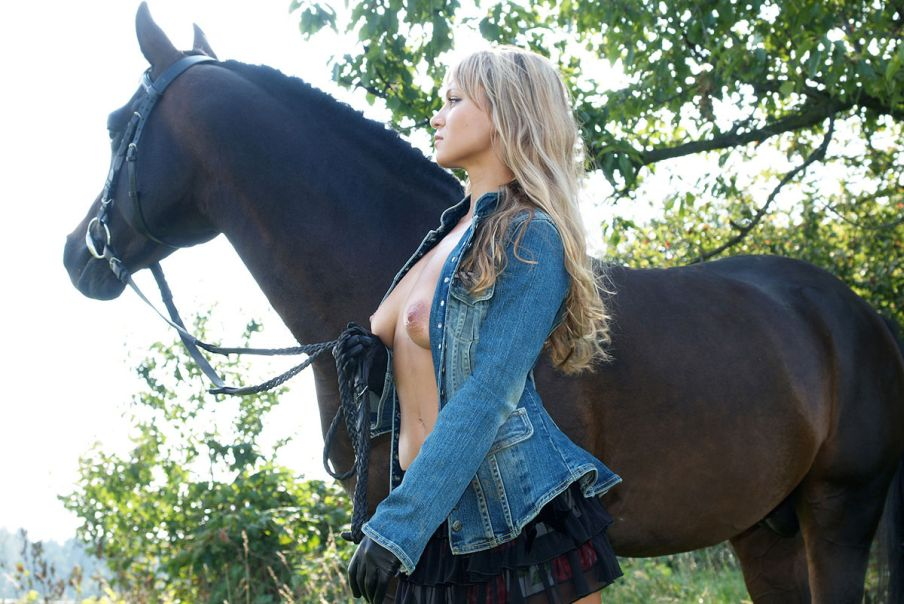 Порноразказы с конем