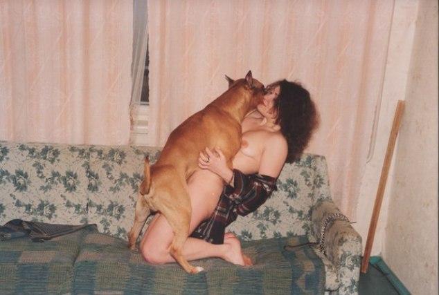 Секс с собаками руководство